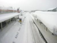 Japonská zima