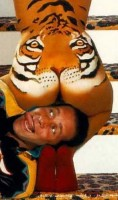 Tygr domácí
