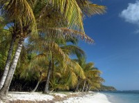Ostrov Mustique Grenadiny Karibik
