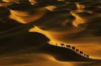 Poušť Sahara, Maroko, Afrika