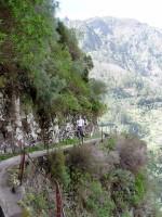 Levada Curral das Freiras, Madeira, Evropa