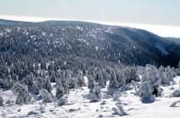Černá hora ze Sněžky