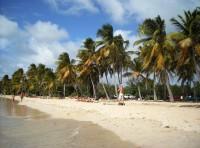 nejpopularnejsi jizni plaze (Autor: srr)
