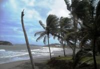 vychodni strana ostrova (Autor: srr)