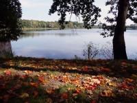 Podzim u Počernického rybníku