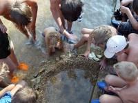 Kluci si postavili mořské akvarium