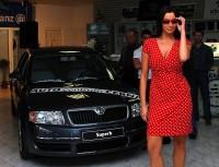 No řekněte, není to dokonalá kombinace? Krásná sexy žena a nádherné auto