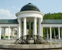 Festival Devět bran otevřel své brány v Mariánských Lázních