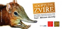 Adoptujte zvíře