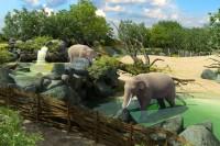 Adventní víkend v Zoo Praha