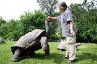 Léto s želvami v Zoo Praha