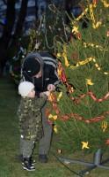 Zdobit může každý aneb zdobení vánočních stromků na Karlově náměstí