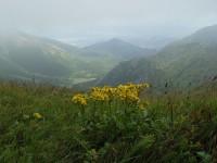 Kamzičník a Dolina Siedmich pramenov