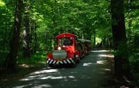 Tip na výlet - Poděbrady