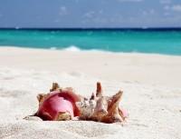 Také karibský ostrov Barbados nabízí báječné pláže