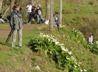 Jaro na portugalském ostrově Madeira