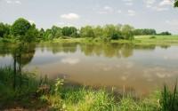 Na in-line bruslích zavítáte i k Třeboňským rybníkům